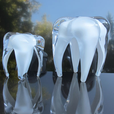 Glass tooth piece of art